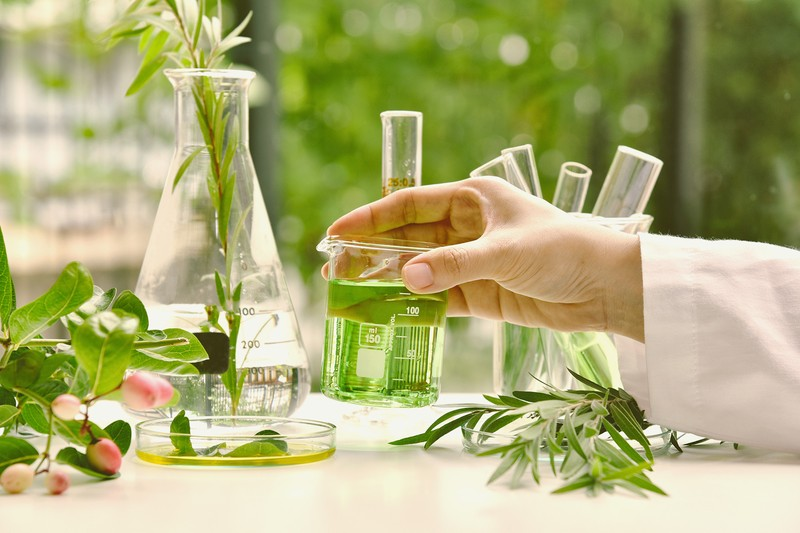 Tips To Make Your Way Through Organic Chemistry This Year